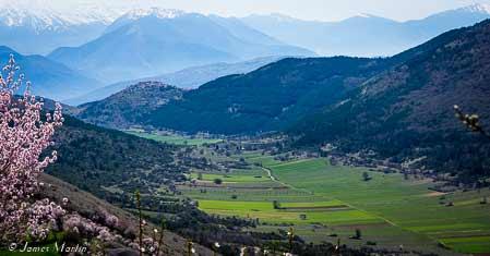 travel value bergen